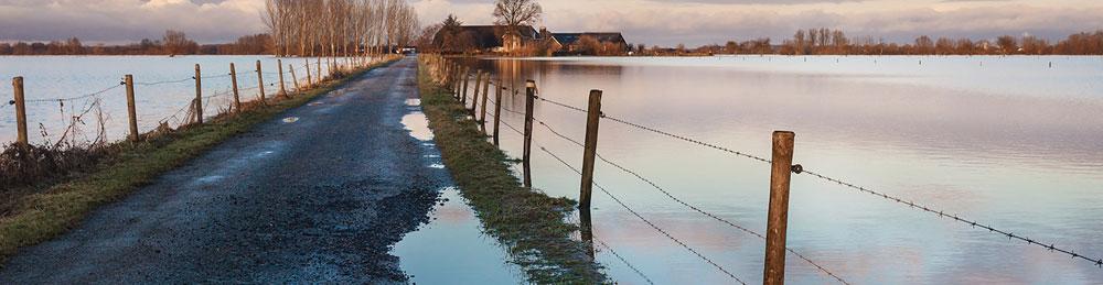 Regenrückhaltung und -nutzung intelligent kombinieren