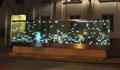 SIEMENS: Stimono - wenn Geräusche sichtbar werden