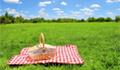TRITEC: Einladung zum Intersolar-Picknick